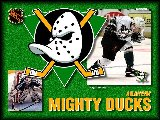 Sports - Hockey - 065
