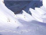Sports - Ski - 013