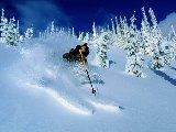Sports - Ski - 035