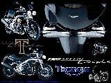 Moto - Triumph - 002